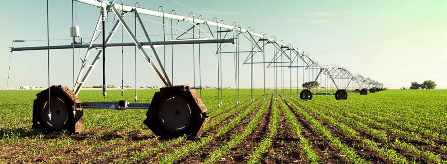 Agro experts tip African governments