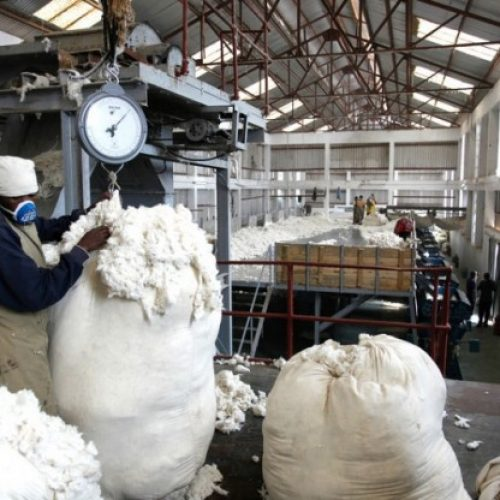 Chinese firm eyes Mulungushi Textiles