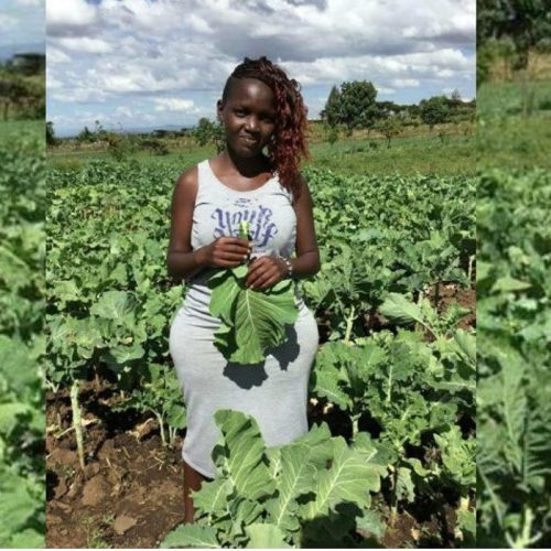 A 25 year old young Kenyan lady impressed people with her business acumen after building an empire around agriculture.