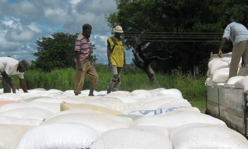 Government to fast-track maize purchase payments