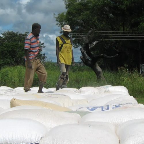 CCPC clears millers over cartels