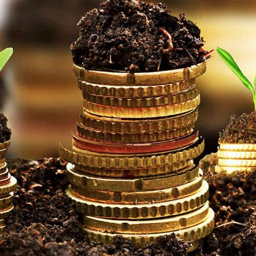 Invest in Agriculture to drive diversification of Zambia's economy, urges Stanbic bank MD