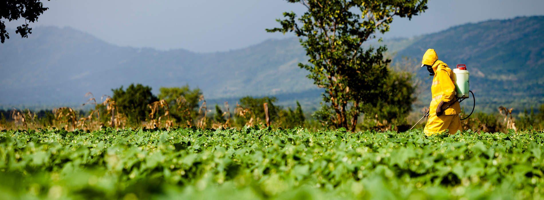 Agro business vital