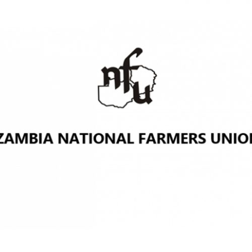 Zimba apologises over ZNFU scandal
