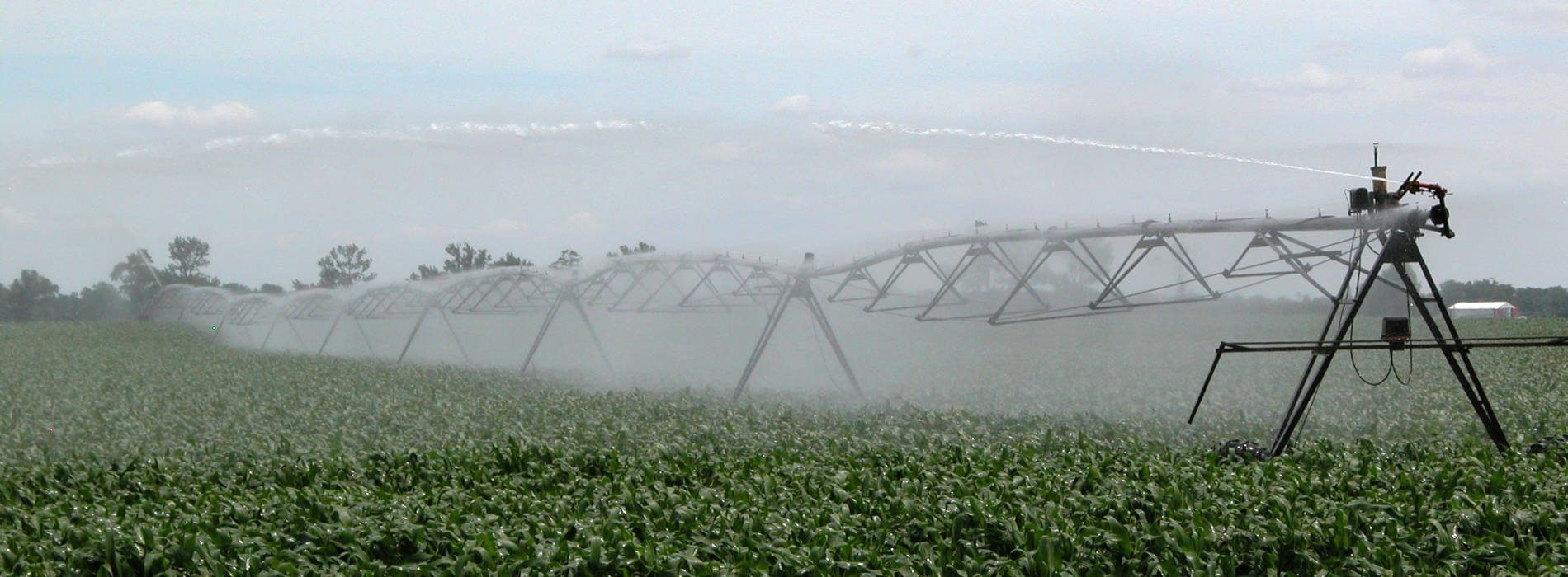 Constraints hold back irrigation progress