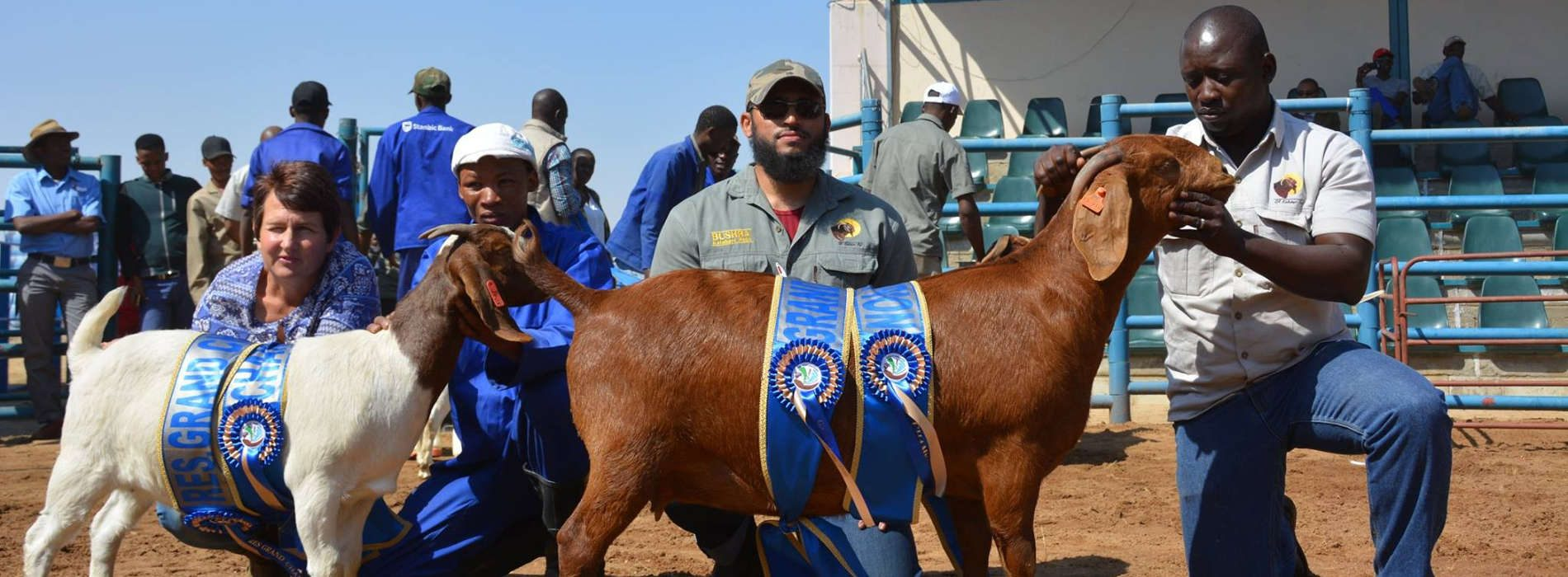 Kalahari Red Goats scoop several awards in Botswana