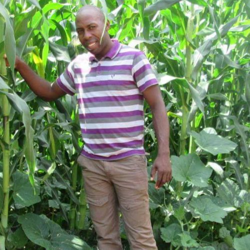 Shawa pleads with farmers to reconsider maize production boycott