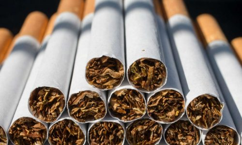 New cigarette plant to boost tobacco production
