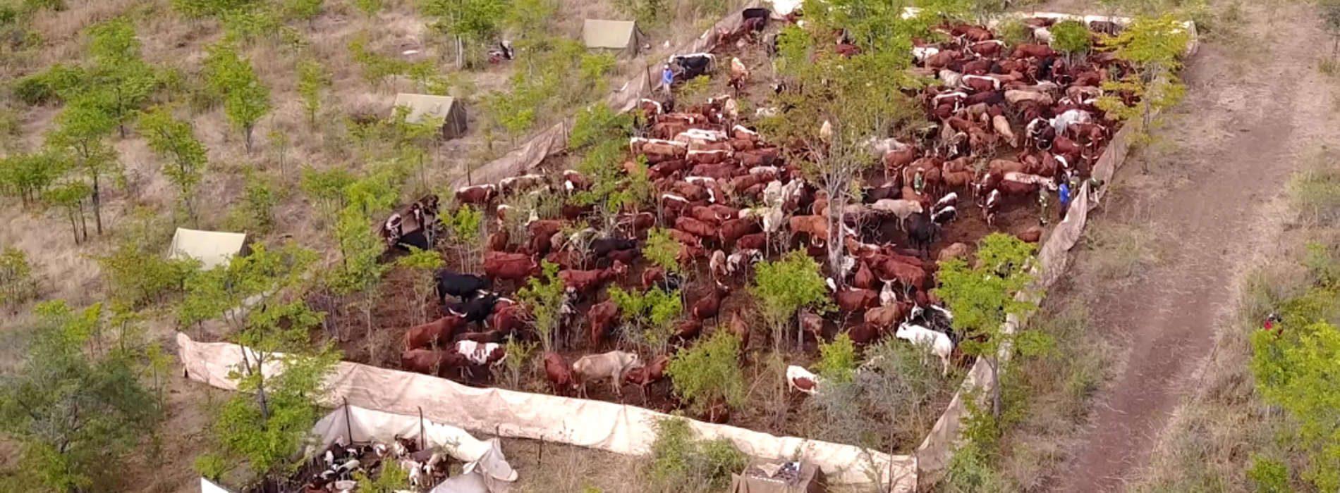 A quiet agricultural revolution