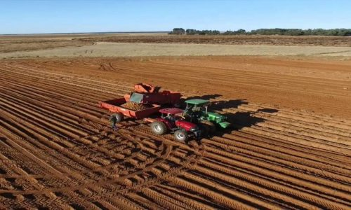 SA Farmers brace themselves for the Drought