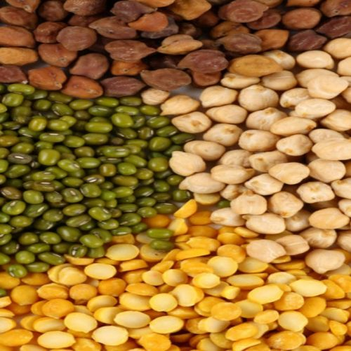 World Pulses Day targets awareness