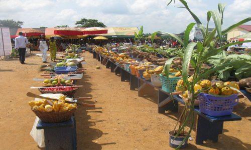 Ghana's 2019 Agritech Challenge