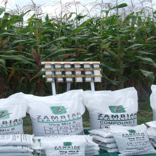 SilverStreet Capital pours funds into ZAMSEED